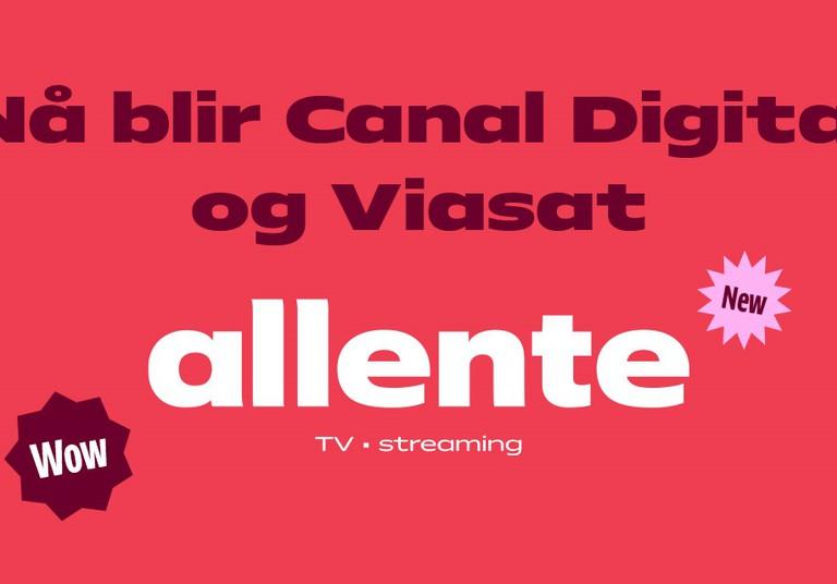 TV-kanaler