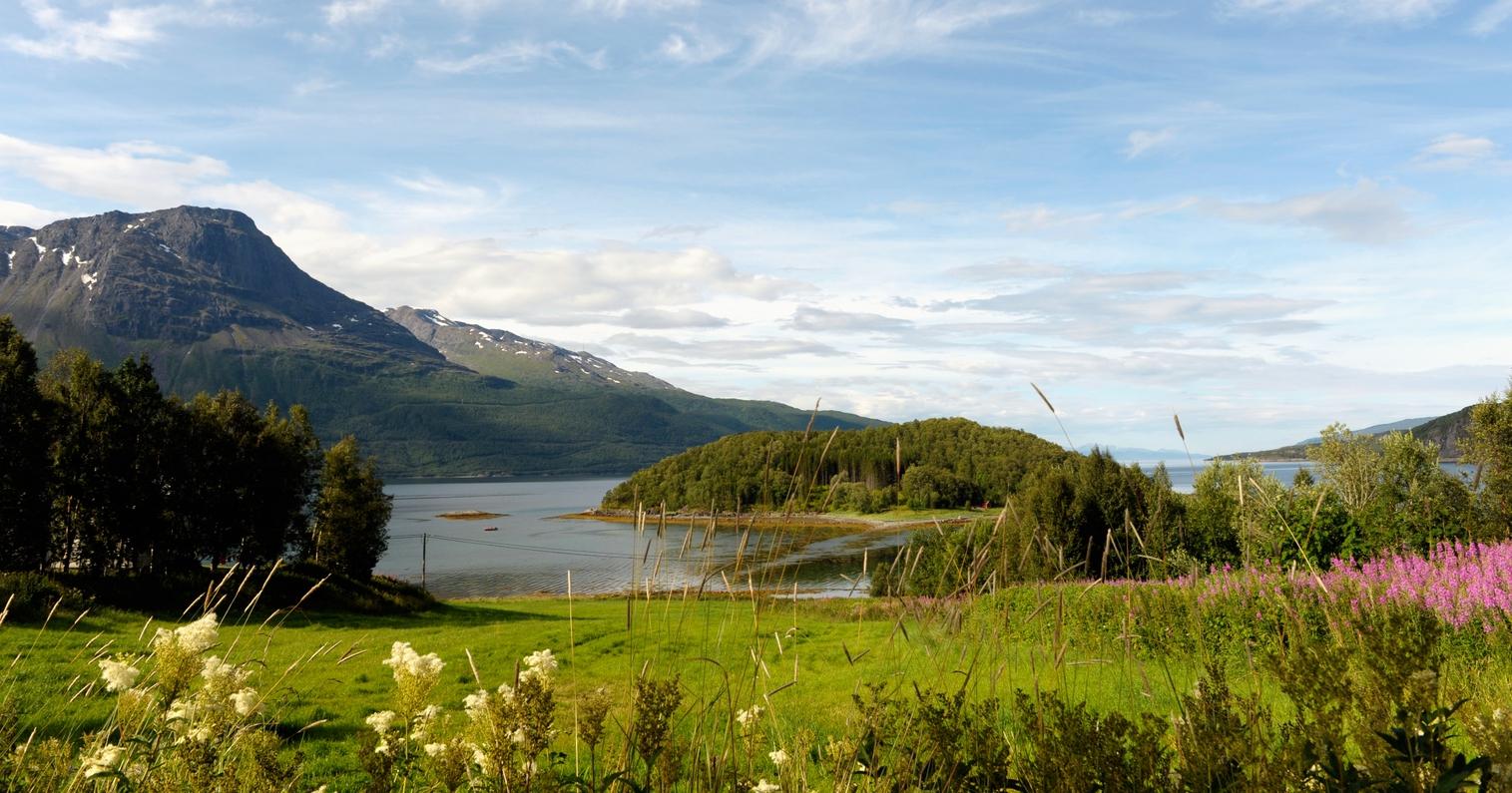 Her er avgiftene lavest - Norsk Familieøkonomi